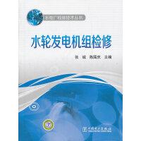 水电厂检修技术丛书 水轮发电机组检修