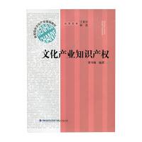 文化产业知识产权 董雪梅 著 福建人民出版社 9787211065004