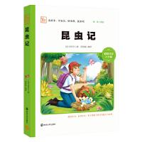 昆虫记 新版 彩绘注音版 小学语文新课标必读丛书