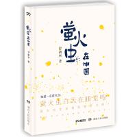 萤火虫在中国