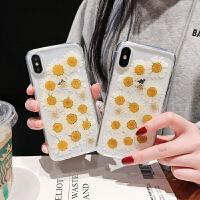 真实小雏菊8plus苹果x手机壳XS Max/XR/iPhoneX/7p/6女iphone6s套 XR 透明 雏菊干花