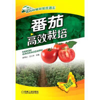 番茄高效栽培(高效种植致富直通车)