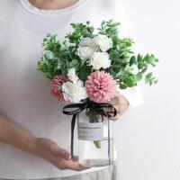 仿真康乃馨绣球假绢花 透明花瓶温馨浪漫简约花艺餐桌客厅盆栽景