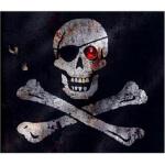 Pirates 海盗 John Matthews(约翰・马休斯) 9781416927341 Simon & Schu