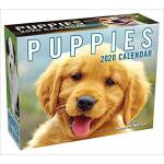 【预订】Puppies 2020 Mini Day-To-Day Calendar 9781449498351