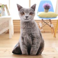毛绒玩具猫咪创意仿真滑稽男3D立体抱枕宠物恶搞