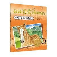 """我的真实动物朋友:小马""""蜜糖""""历险记"""