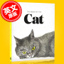 现货 猫之书:猫的艺术 英文原版 The Book of the Cat: Cats in Art 插画 艺术集