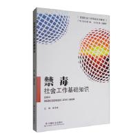 【正版二手书9成新左右】禁毒社会工作基础知识 潘泽泉 中国社会出版社