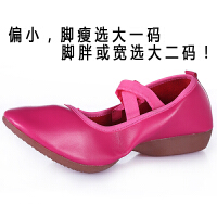 伊兹广场舞鞋夏季低跟广场舞女鞋舞蹈鞋女软底布鞋跳舞鞋
