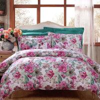 床上四件套全棉纯棉网红款床上用品公主风床单床笠款被套
