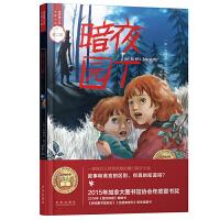 世界青少年大奖小说丛书:暗夜园丁