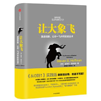 让大象飞(pdf+txt+epub+azw3+mobi电子书在线阅读下载)