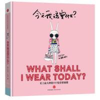 【二手书8成新】今天我该穿什么? (英)菲菲・拉宾 中信出版社