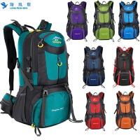 户外旅行大包登山包背包双肩包郊游旅行户外登山包徒步旅游野营双肩背包 装备用品 20寸