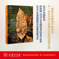 看不见的森林:林中自然笔记(自然文库) 【美】戴维・乔治・哈斯凯尔 商务印书馆