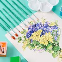 油画笔套装美术专用丙烯水粉笔刷子扇形排笔彩绘初学者手绘墙绘色彩笔专业用品水彩颜料绘画