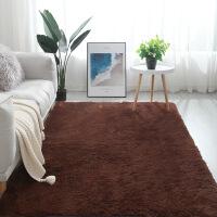 丝毛地毯卧室客厅茶几床边毯