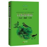 自然博物馆:百灵・黄鹂・八哥