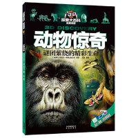3D探索大百科・新奇视野:动物惊奇