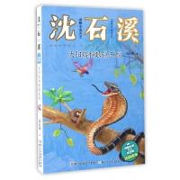 太阳鸟和眼镜王蛇(注音读本)/动物小说大王沈石溪