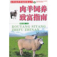 rt肉羊饲养致富指南/农民经济养殖致富丛书,陈小强,内蒙古科学技术出版社,9787538020502
