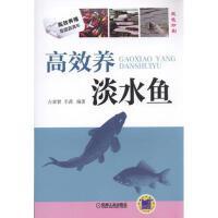 【二手书8成新】高效养淡水鱼 占家智,羊茜著 机械工业出版社