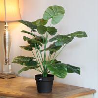 绿植盆栽假花发财树金钱树大盆套装 客厅落地室内装饰摆件