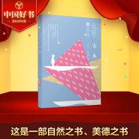大水(3本) 曹文轩儿童文学奖获奖作品2018中国好书获奖作品