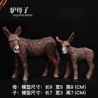 野生动物世界驴模型儿童仿真实心动物园玩具模型