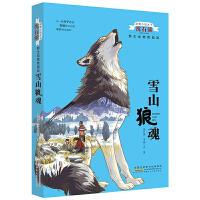 动物小说大王沈石溪:野生动物救助站-雪山狼魂