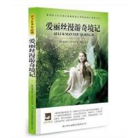 大语文丛书 爱丽丝漫游奇境记 青少年必读世界经典文学名著小说 中文全译本 学生必读课外名著