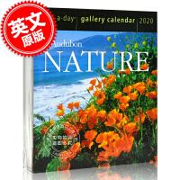 现货 2020年日历 奥杜邦的自然风光 一天一页画廊日历 英文原版 Audubon Nature Page-A-Day? Gallery Calendar 2020
