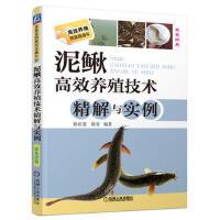 【二手书8成新】泥鳅高效养殖技术精解与实例 徐在宽 等 机械工业出版社