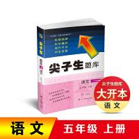辽宁教育:2019尖子生题库―五年级语文上册
