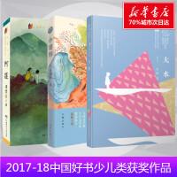 2017-2018中国好书少儿获奖作品 大水 小翅膀 阿莲