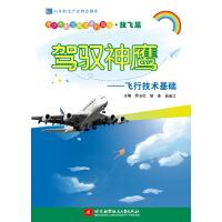 驾驭神鹰――飞行技术基础(青少年航空教育系列图书・放飞篇)