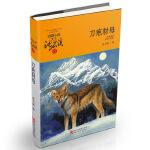动物小说大王沈石溪・品藏书系:刀疤豺母(升级版)