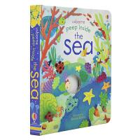 Usborne Peep Inside the Sea 偷偷看里面系列海洋 百科科普翻翻书英语版 儿童英语启蒙绘本 洞