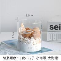 玻璃花瓶海螺石子套装透明花器客厅摆件现代工艺品海洋贝壳装饰品