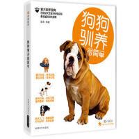 【正版二手书9成新左右】狗狗驯养很简单(书+V 梁朵著 成都时代出版社