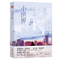 小世界:著名旅美作家汪一洋继《洋嫁》后又一力作,当代都市30+新女性独立宣言,都市女性的生存指南