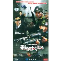 刑侦风暴-二十集电视连续剧(1-20VCD)