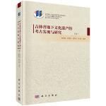 吉林省地下文化遗产的考古发现与研究(上、下册)