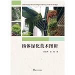 桥体绿化技术图析