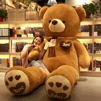 熊�公仔抱抱熊熊娃娃抱抱熊泰迪熊熊�布娃娃女孩可�弁媾脊�仔大熊毛�q玩具生日�Y物女