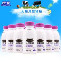 欧亚牛奶大理牧场低温酸奶蓝莓酸奶酸牛奶243g*12瓶早餐抖音同款
