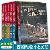 西顿野生动物故事集全套6册小学生课外阅读书籍三四五六年级必读书目青少年科普动物小说儿童自然探索百科故事书6-8-12岁