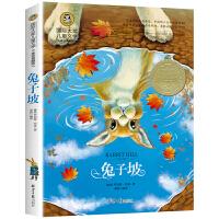兔子坡 儿童文学读物国际大奖四五六年级小学生新课标课外阅读书籍故事书必读名著