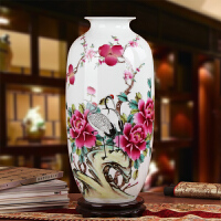 名家夏国安作品 景德镇陶瓷器花瓶 高档礼品瓷手绘粉彩富贵长寿瓶